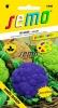 418982 Květák letní směs barev 15s/D