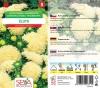 20351/5406 Astra čínská - pivoňkovité žlutá 0,4g