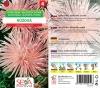 20251/5309 Astra čínská jehlicovitá růžová  0,5g