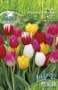 596481 / 999 Duhová směs tulipánů 25ks