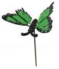 Motýl zelený na tyčce / CH8430