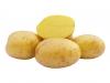 Madeira B (pytel 25kg)