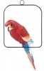 Papoušek na houpačce / CH9802