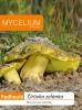 Čirůvka zelánka 10g - podhoubí
