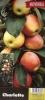 Jabloň sloupovitá Charlotte