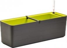 Truhlík Berberis 80 cm Antracit + Zelená